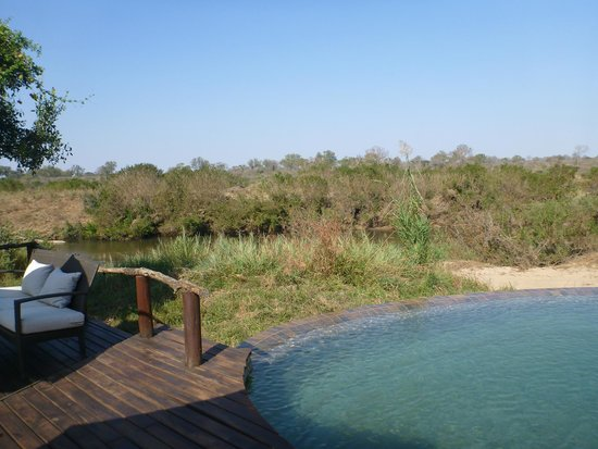 Lion Sands River Lodge: RIver Lodge Pool