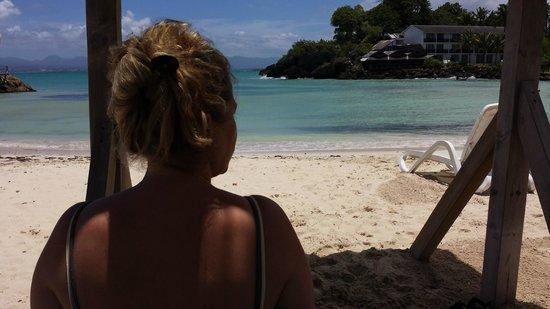 La Créole Beach Hôtel & Spa : Une vue reposante sous les carbet et les transat de l'hôtel