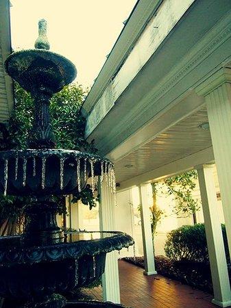 Phoenix Inn: Fountain