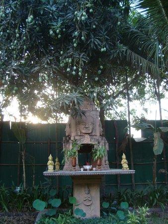 أنغكور سبيريت بالاس: манго
