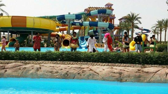 Sea Club Aqua Park: فريق الأنيميشن