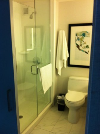 Hilton Garden Inn New York/Central Park South-Midtown West: The shower cabin