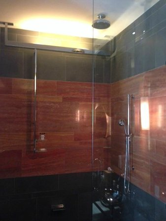 Andaz 5th Avenue: The Amazing Shower