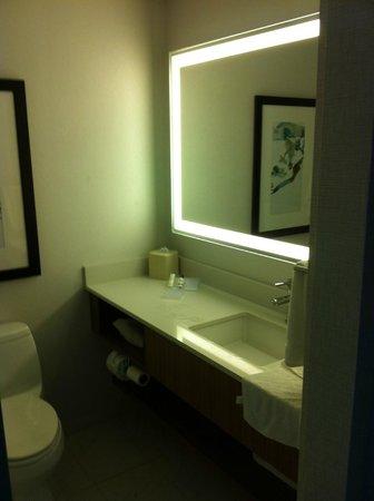 Hilton Garden Inn New York/Central Park South-Midtown West : Nice and modern bathroom