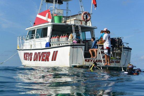Keys Diver Snorkel & Scuba: Beautiful day for a dive