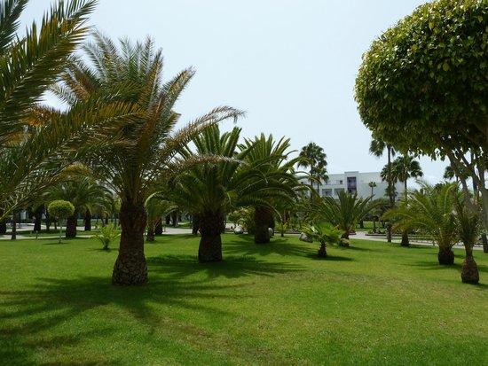 ClubHotel Riu Gran Canaria: .