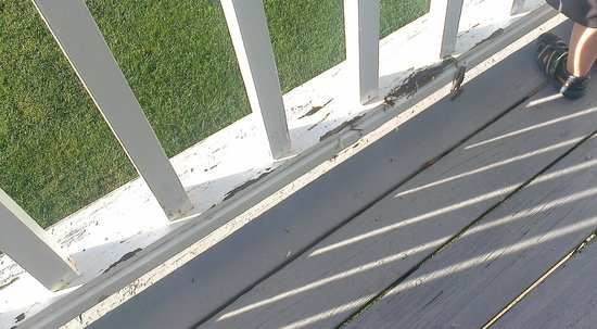 Rhumb Line Resort: Rotted wood on the balcony.