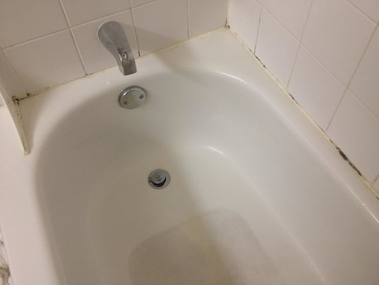 Extended Stay America - Seattle - Bellevue - Factoria : Mold