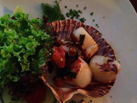 Borwin Hafenrestaurant : Jacobsmuscheln