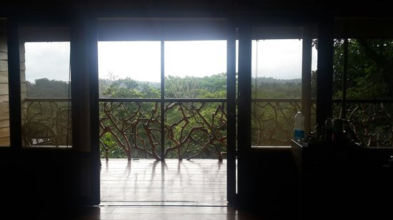 Tranquil Resort: View from the bed of tree villa.....