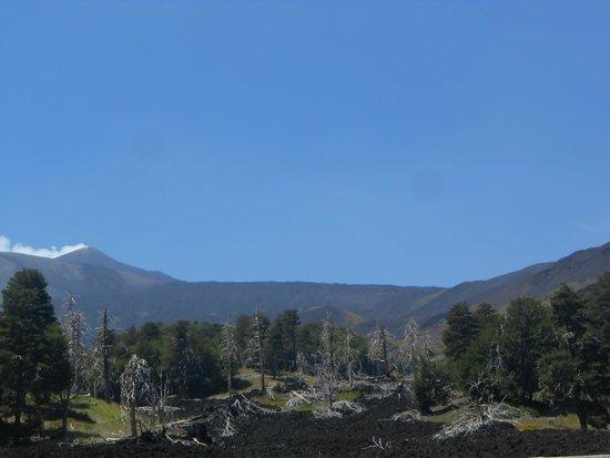 Panorama Sicilia - Etna Escursioni e Day Tours: lava flow