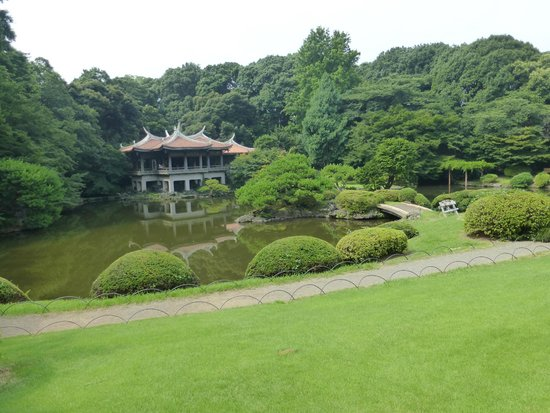 Shinjuku Gyoen National Garden: Nice view