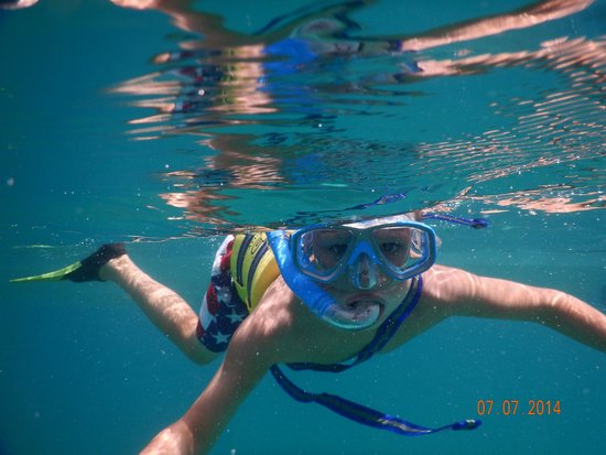 Captain Alan's Three Island Snorkeling Adventure : Fun for kids!