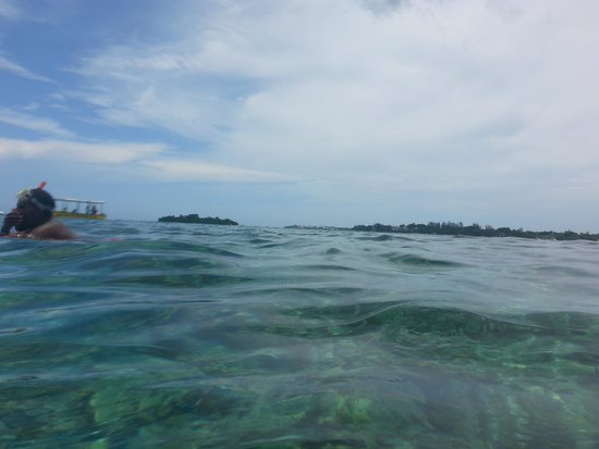 ClubHotel Riu Negril: out in the water