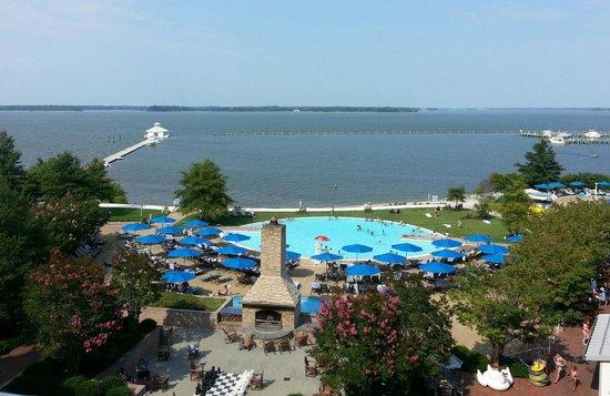 Hyatt Regency Chesapeake Bay Golf Resort, Spa & Marina: main pool area