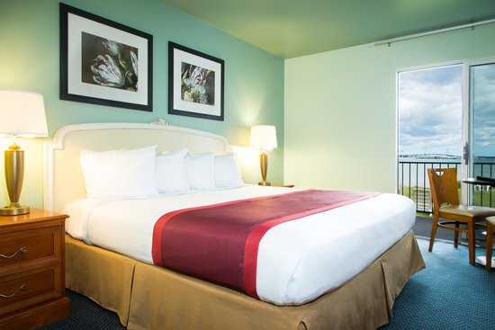 Clearwater Lakeshore Motel: King Lakefront