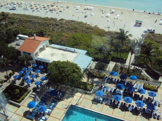 Miami Beach Resort and Spa: Vista do quarto