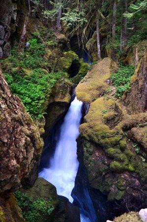 Ladder Creek Falls: Upper Ladder Falls