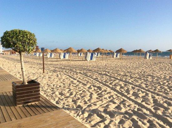 Пляж около отеля Playa Victoria