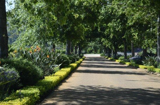 Delaire Graff Estate: Lovely entrance