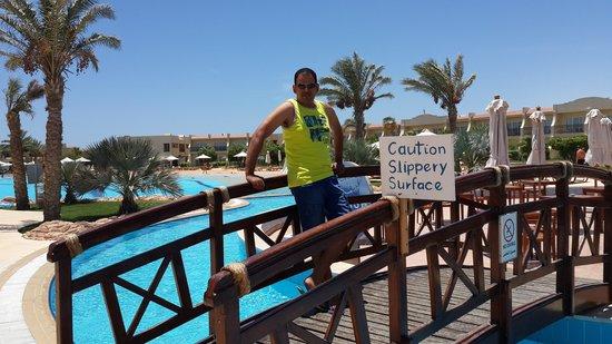 Hilton Sharks Bay Resort : The pool