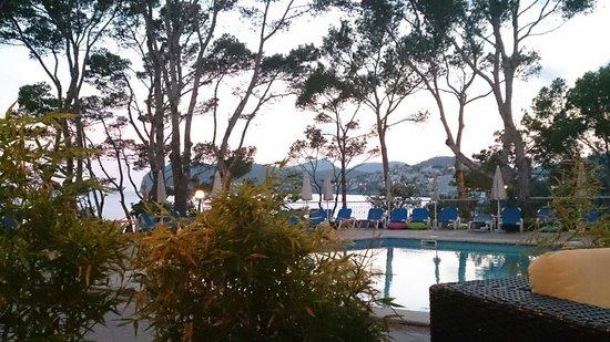 Universal Hotel Lido Park: Vista desde los sofas de delante de la piscina al anochecer