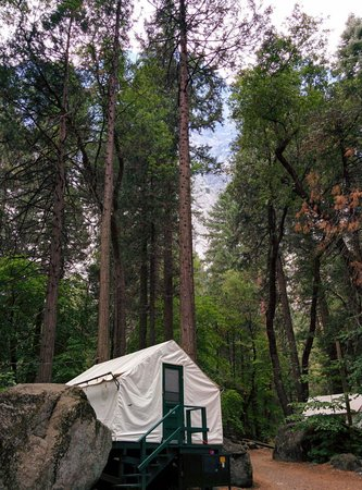 Half Dome Village : Curry Village camping