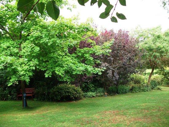 Les jardins anglais photo de jardin de quercy varen for Les jardins anglais