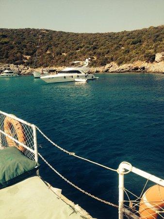 WOW Bodrum Resort: Boat trip