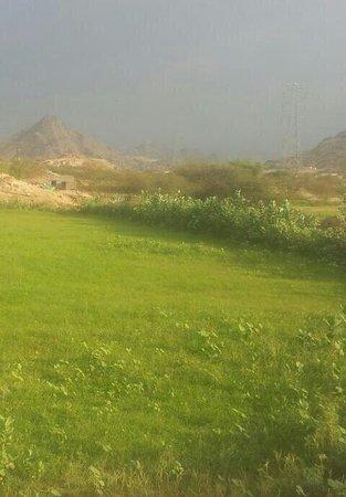 Abha Dam Lake Picture