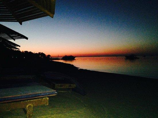 SUNRISE Select Royal Makadi Resort: sunrise at the beach