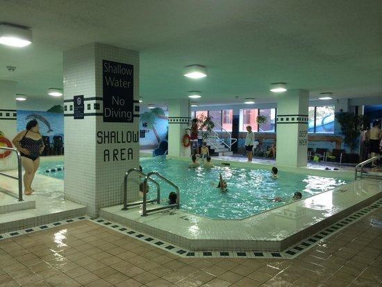 Chelsea Hotel, Toronto: Family pool