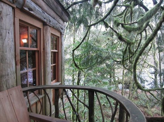 Treehouse Point: View from the deck towards the river