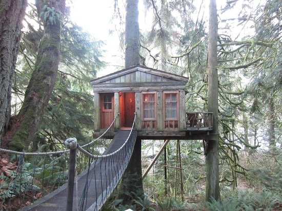 Treehouse Point: Temple of The Blue Moon