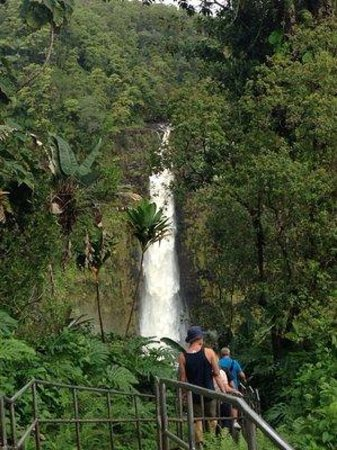island of hawaii 2019 best of island of hawaii tourism tripadvisor rh tripadvisor com