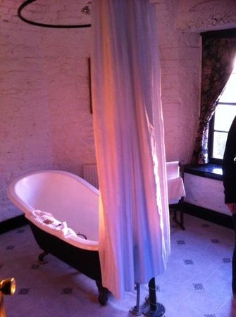 Kinnitty Castle Hotel : Bathroom before sludge bath