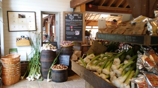 The Garlic Farm Cafe: Wonderful Produce