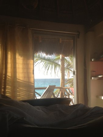 Amansala Eco Chic Resort: My view at 7 AM every day.