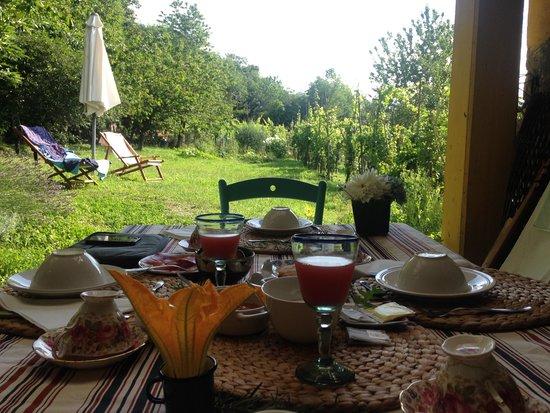 Il Ciliegiolo: Table du petit déjeuner