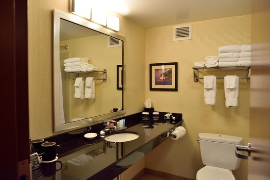Crowne Plaza Suites Pittsburgh South : Bathroom