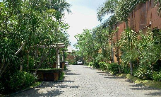 The Kunja Villas & Spa: Private lane outside villa