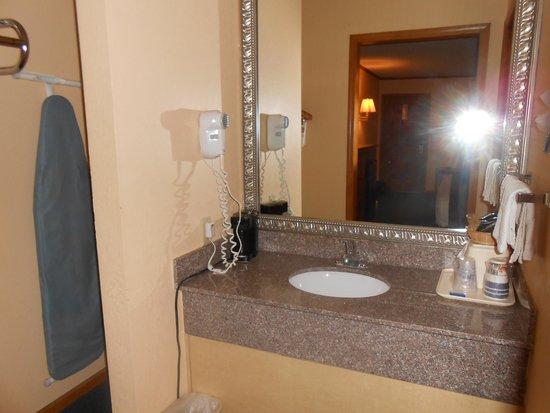 Best Western Country Inn - North: Sink