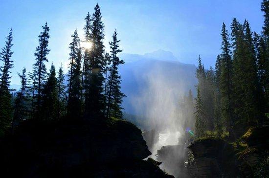 Athabasca Falls: Morning light