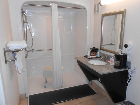 Quality Inn & Suites Airport: Walk-in shower in accessible room