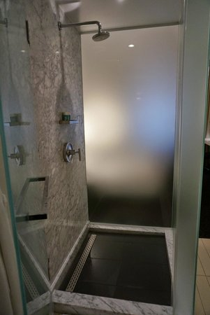 W Washington DC : Free standing glass shower