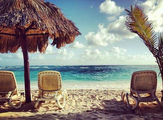 Majestic Colonial Punta Cana : Relaxing beach!