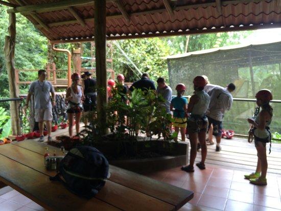 Canopy Safari: Waiting to start....