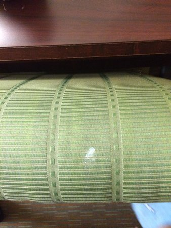 Rodeway Inn at Portland Airport: Unidentified stain on chair