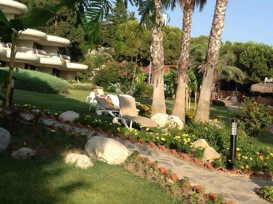 Crystal Sunrise Queen Luxury Resort & SPA: bahçeden görünüm