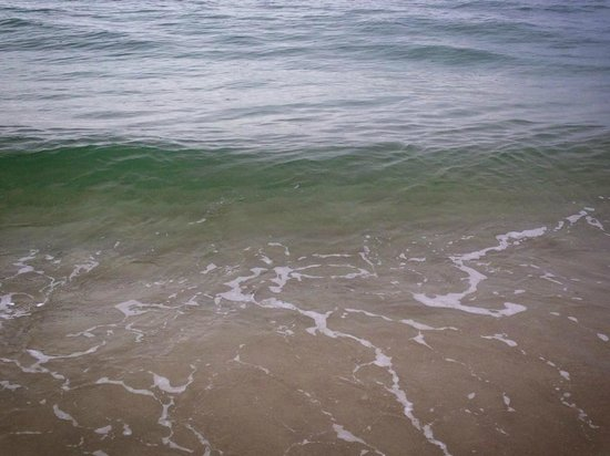 Fort Lauderdale Marriott Harbor Beach Resort & Spa: Clear and CLEAN water!